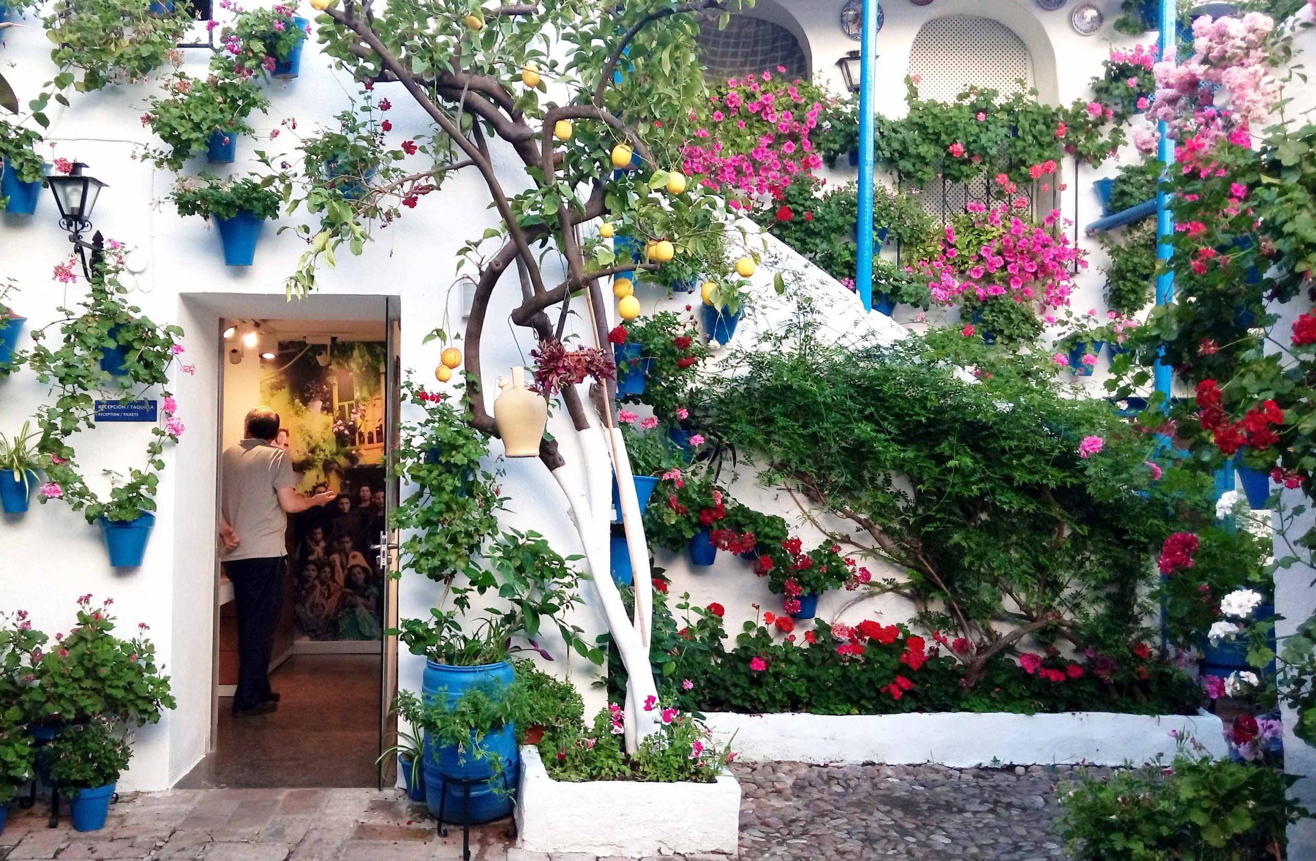 100 años de patios de Córdoba